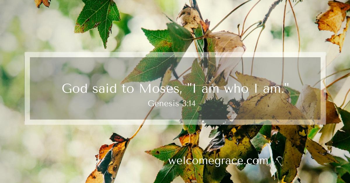 God is all our refuge